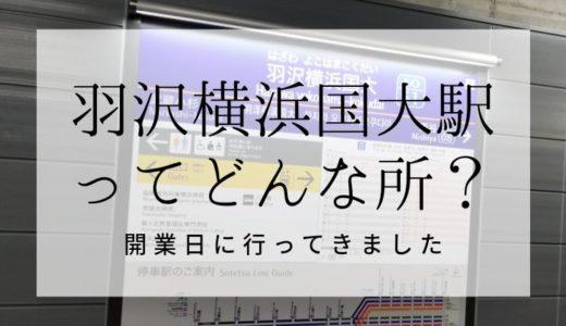 【開業初日】羽沢横浜国大駅を探訪!周辺に観光地は何もない?