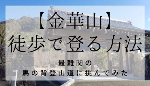 【金華山】馬の背登山道コースを登ってみた!登山時の服装や景色は?